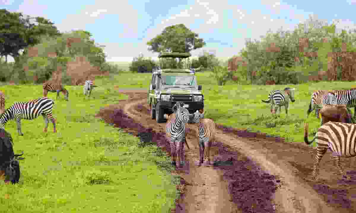 Game drive in Ngorongoro Crater (Dreamstime)