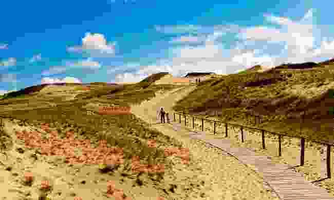 Walking the Dead Dunes in Neringa – more like the Sahara than Lithuania (Shutterstock)