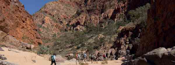 Hiking, Larapinta Trail (Tourism NT)