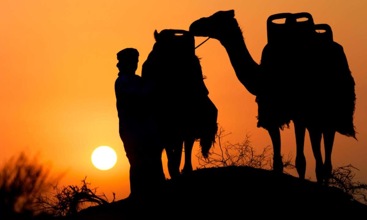 Camel trekking at sundown (Ras Al Khaimah Tourist Board)