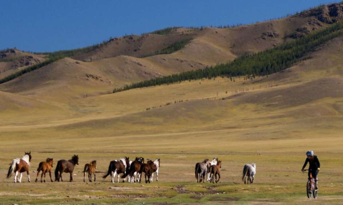 Cycling across Mongolia (Exodus)