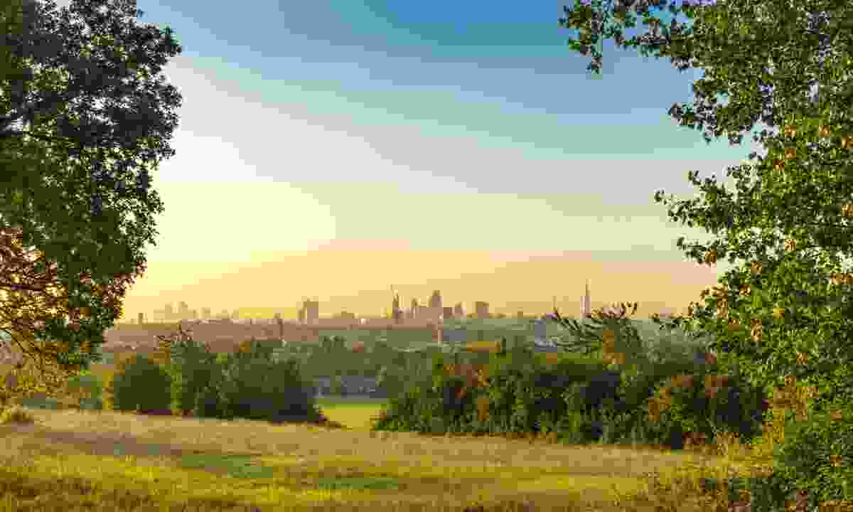 Early morning mist on Hampstead Heath (Dreamstime)
