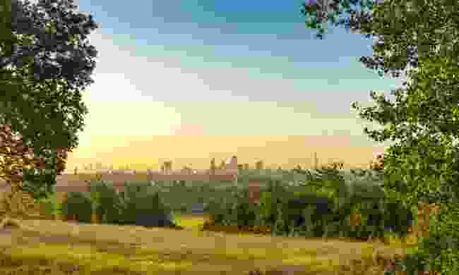 Hampstead Heath, London. (Dreamstime)