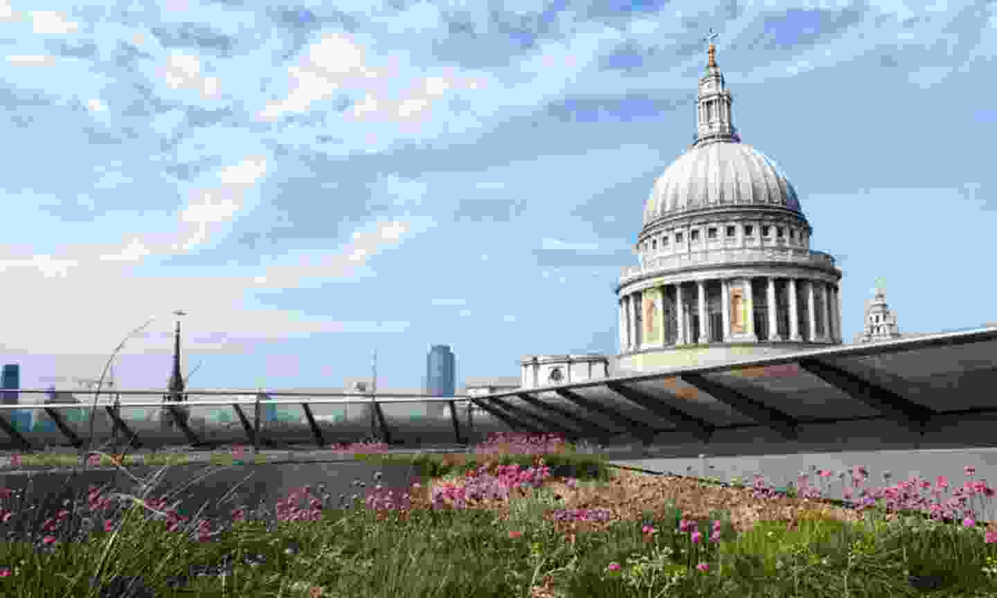 View of St Paul's from the One New Change roof terrace (onenewchange.com)