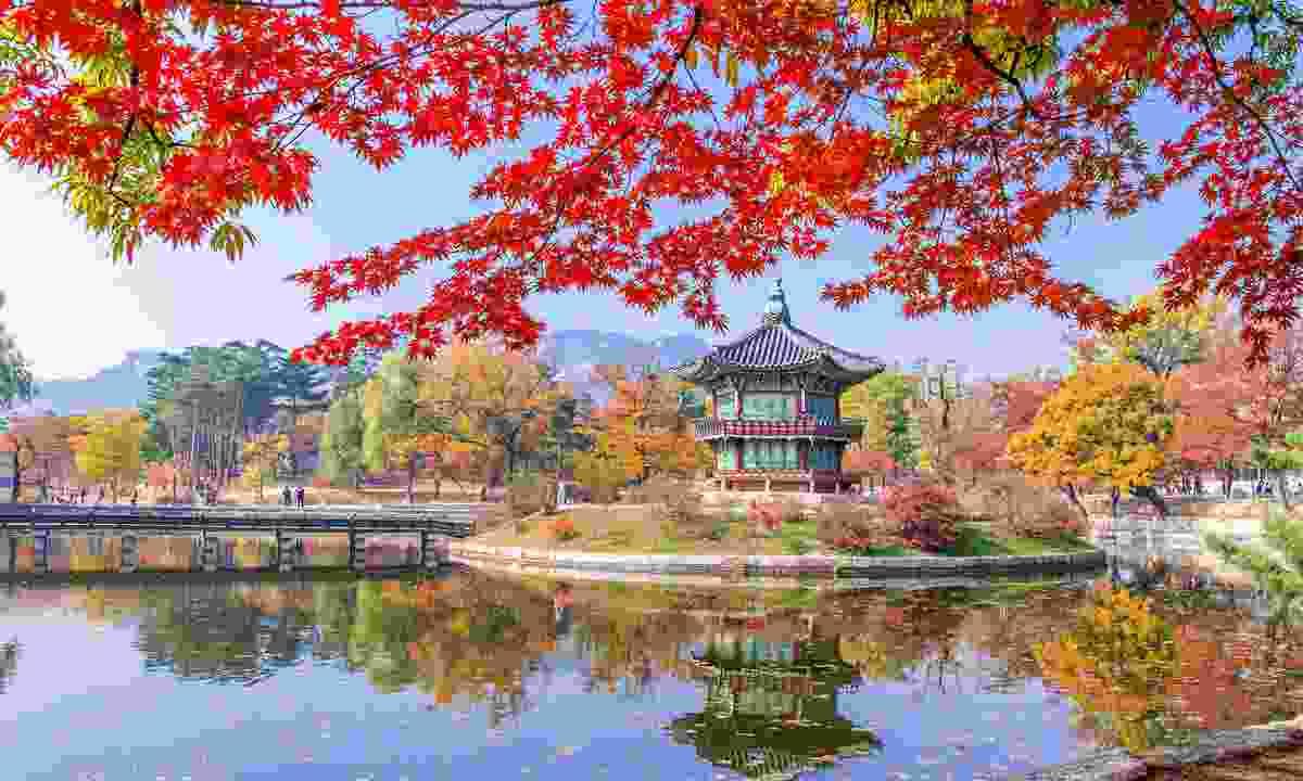 Gyeongbokgung in autumn (Shutterstock)