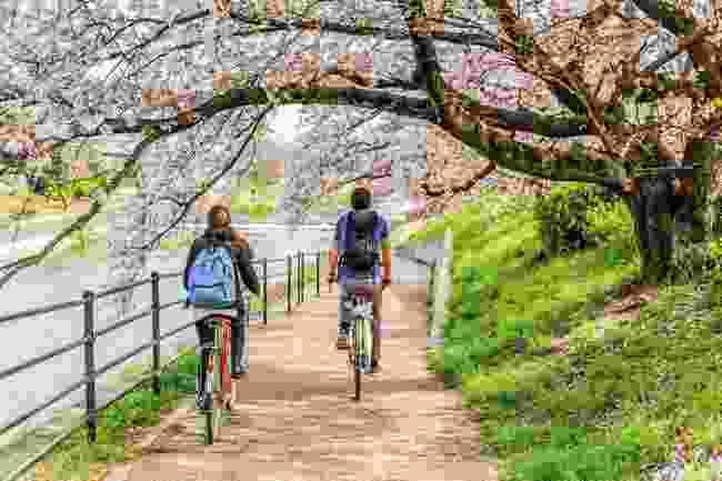 Kyoto by bike (Shutterstock)
