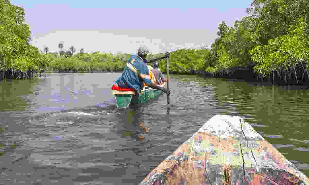 Boat trip on a river in Makasutu National Park (Dreamstime)