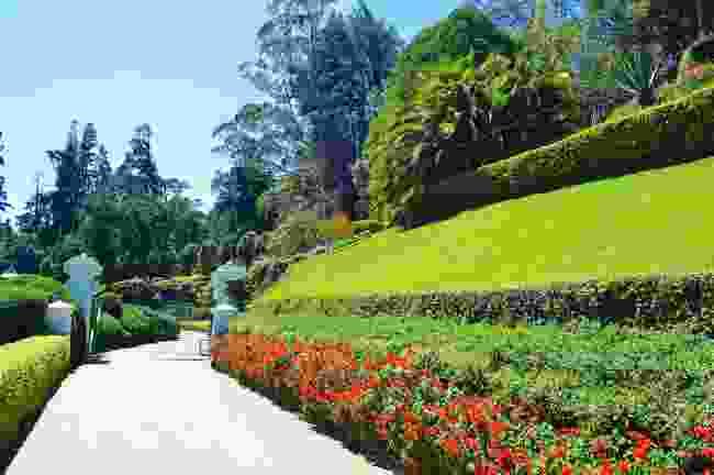 Hakgala Botanical Garden, Sri Lanka (Shutterstock)