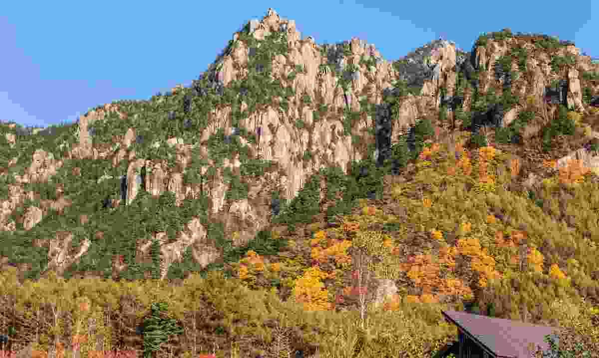 Kobushi Biosphere Reserve, Japan (© UNESCO/Kobushi Biosphere Reserve)