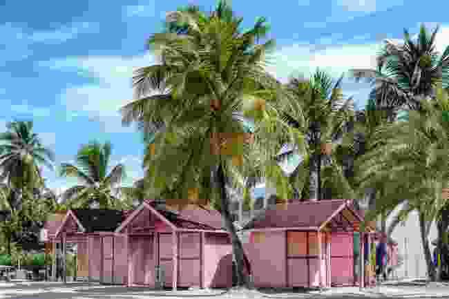 Caribbean life (Shutterstock)