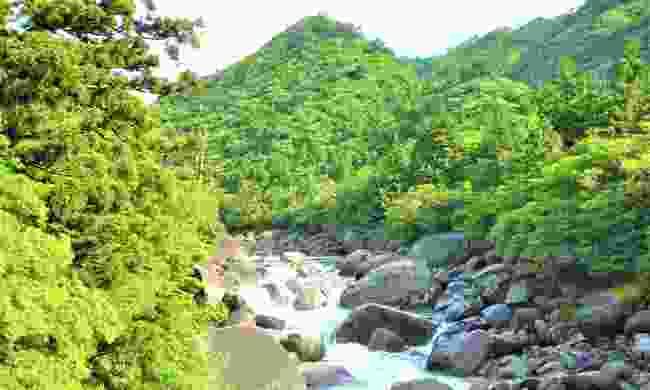 The small island of Yakushima (Dreamstime)