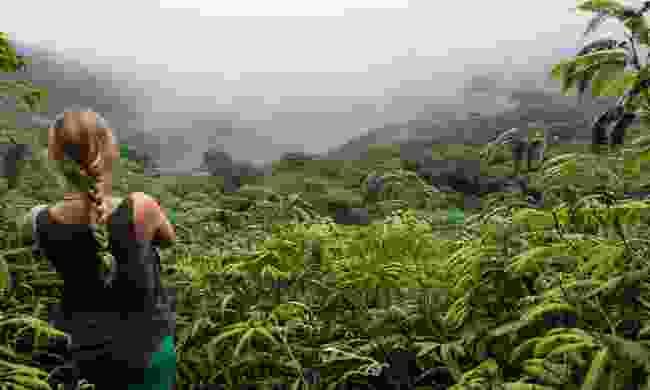 Exploring Maderas Volcano, Ometepe Island (Shutterstock)