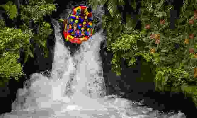 Go white water rafting down the Zambezi river (Shutterstock)