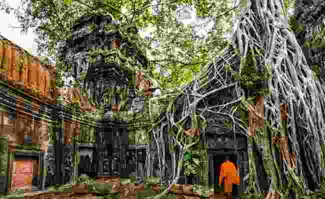 Ruins of Angkor Wat (Shutterstock)