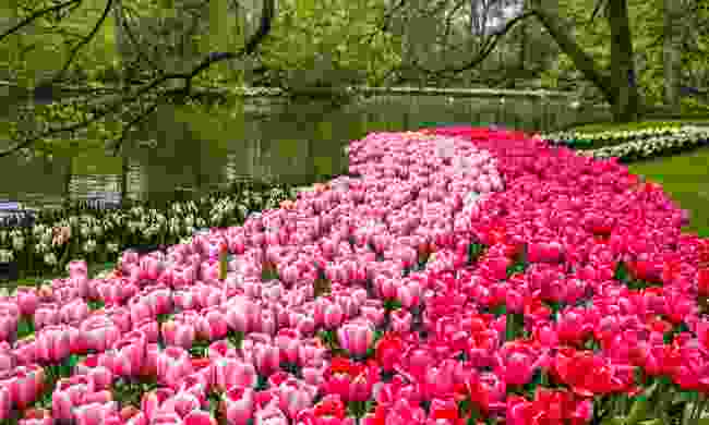 Keukenhof Gardens in Lisse, Netherlands (Shutterstock)