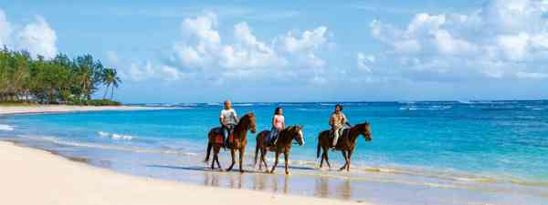 why to visit Barbados in Winter