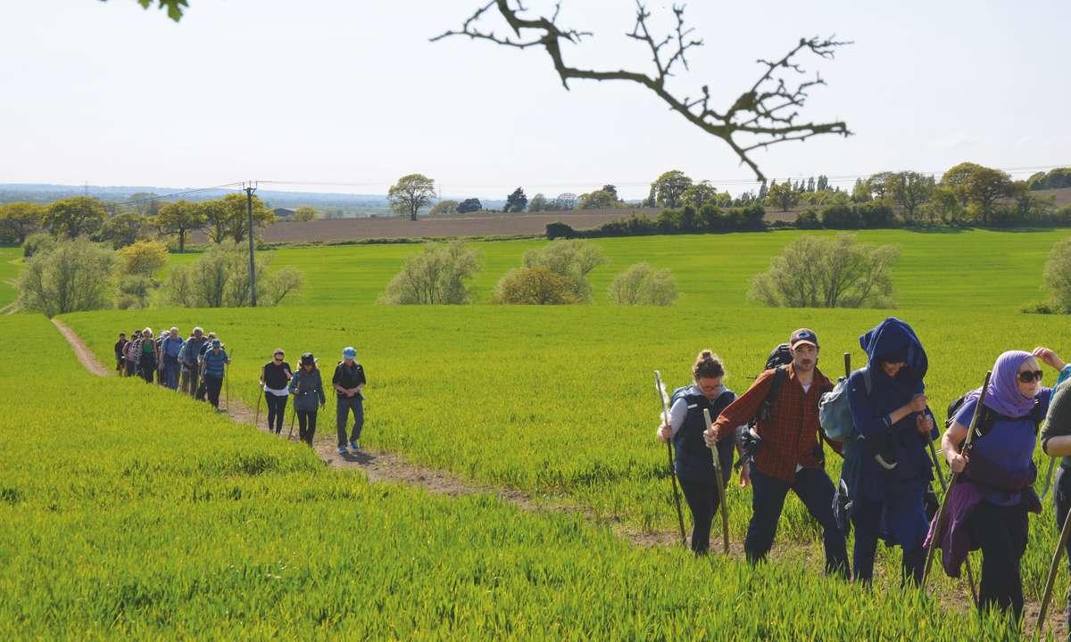 Walking across Kentish fields (Phoebe Smith)