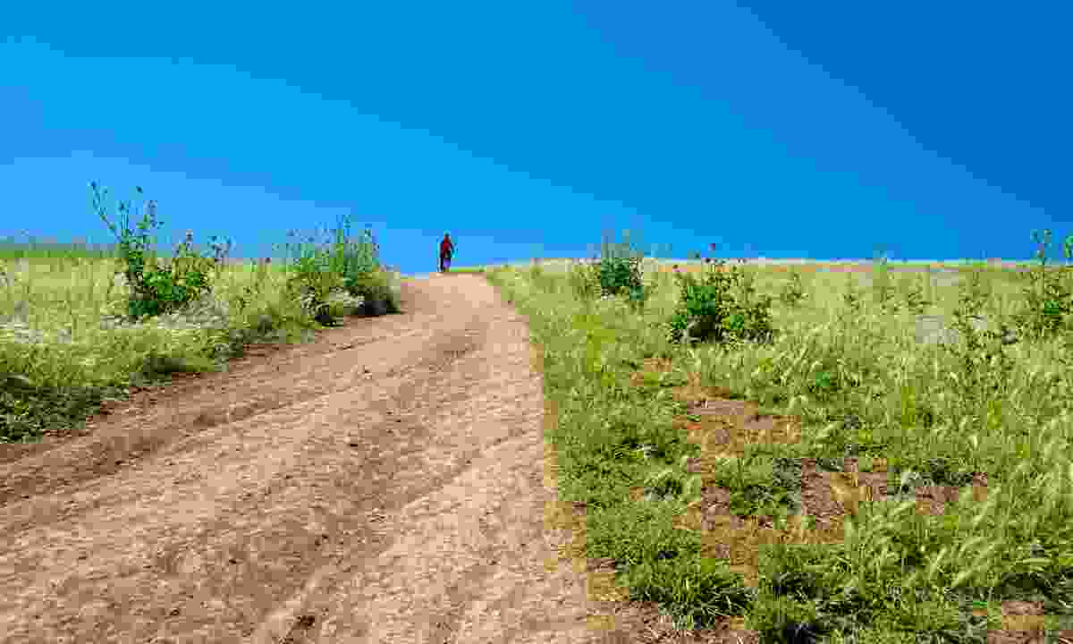 Trail going up Caffarella Park (Dreamstime)
