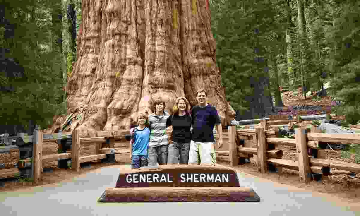 Family posing in front of General Sherman (Dreamstime)
