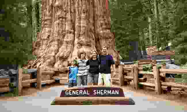 Family posing in front of General Sherman (Dreamstime)