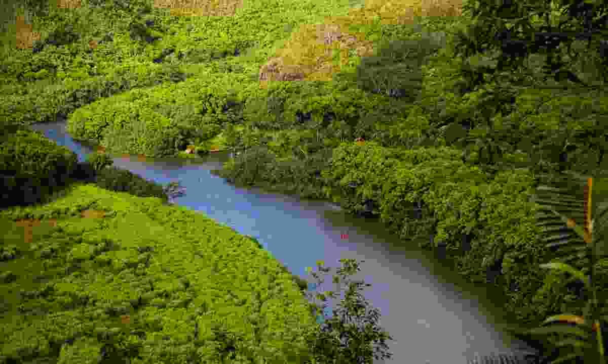 Kayaking on Kaua'i (Hawaii Tourism Authority/Tor Johnson)