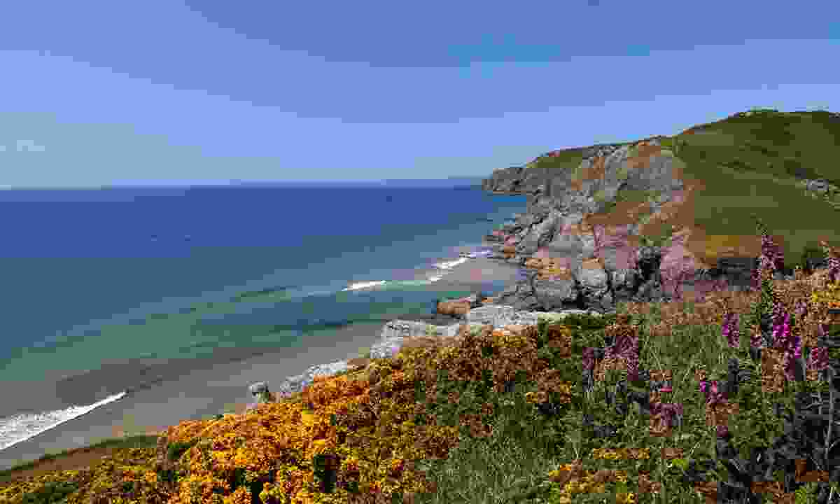Soar Mill Cove (Dreamstime)