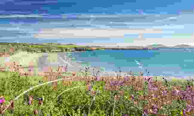 The view from Whitesands Bay (Dreamstime)