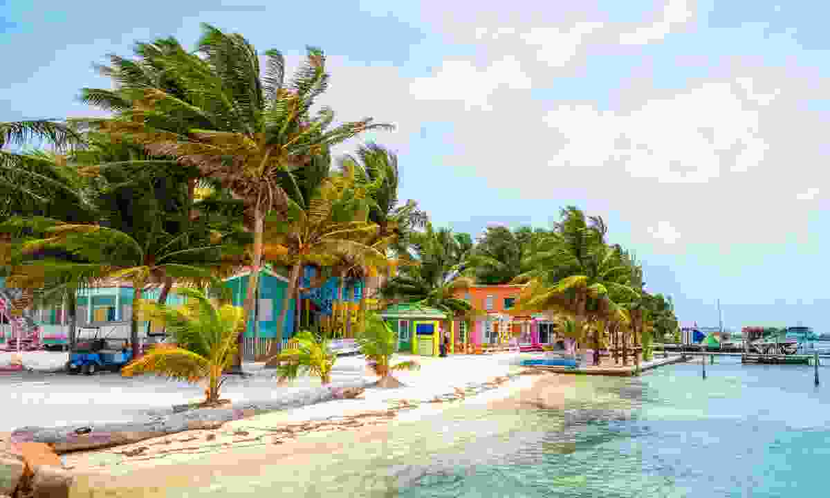 Belize beach (Dreamstime)