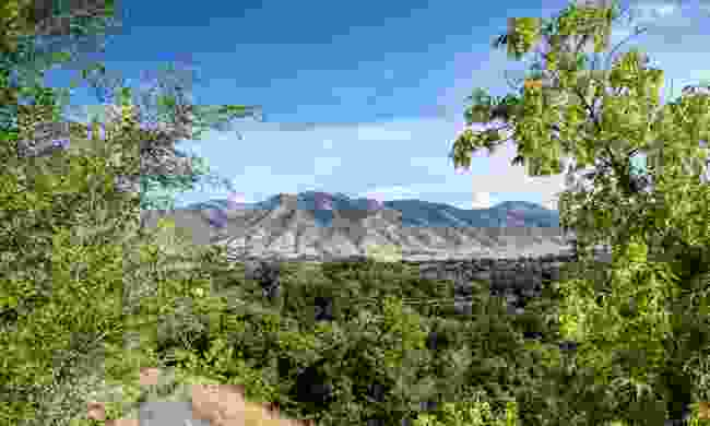 The view of Mount Logan from Logan city centre (Shutterstock)
