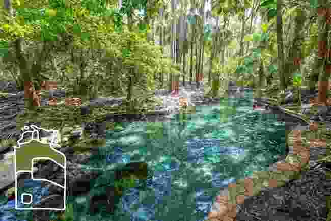 Mataranka thermal pools (Shutterstock)