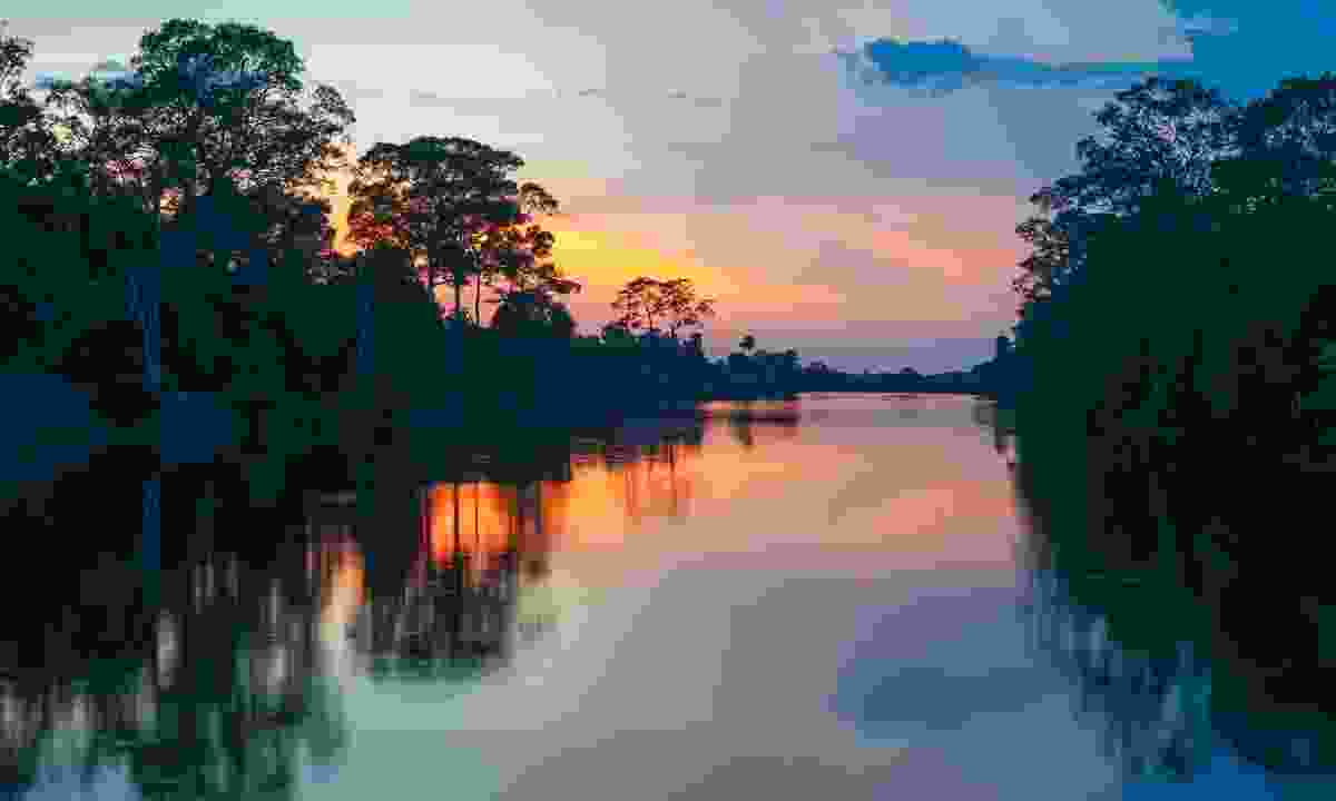 Cruise the Amazon in Peru (Shutterstock)