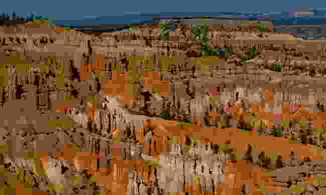 The hoodoos of Bryce Canyon, USA (Phoebe Smith)