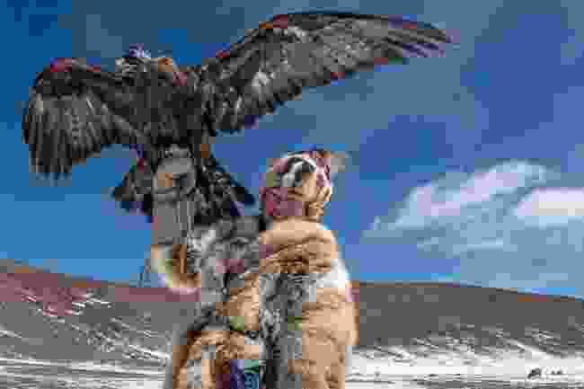 An eagle huntress in Mongolia (Prabir Mitra)
