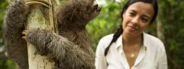 Liz with there-toed sloth (BBC NHU/Stuart Dunn)