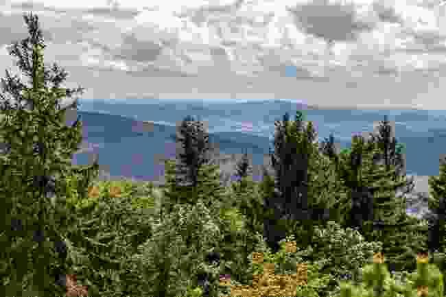 View from Mt Inselsberg, Germany (Shutterstock)