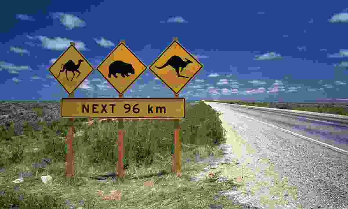 Road sign along Eyre Highway (Flight Centre)