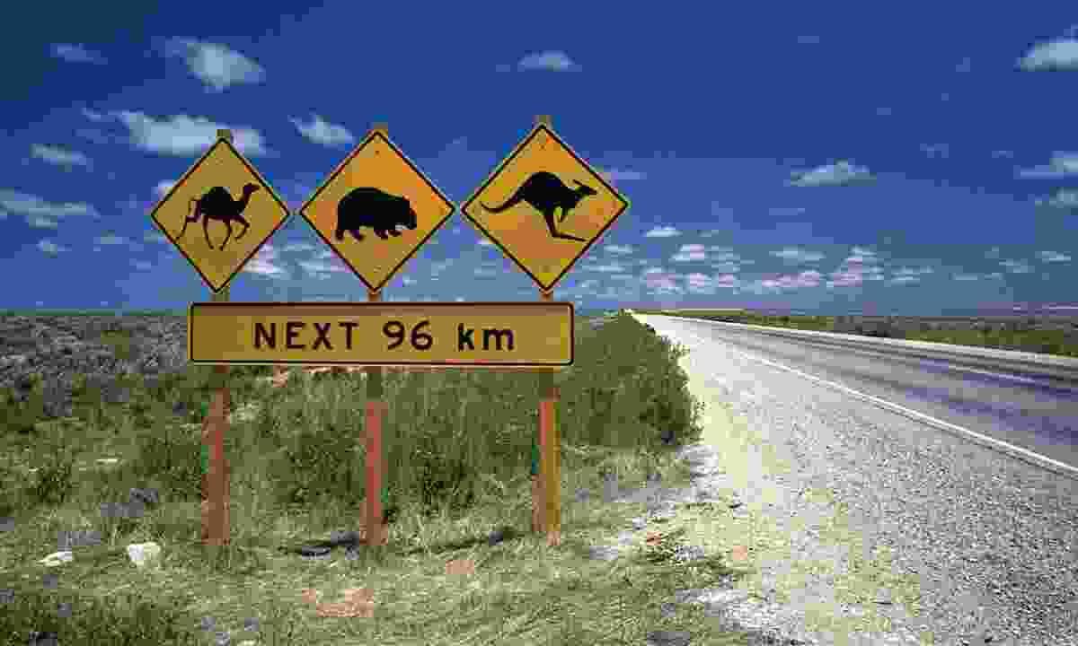 Road sign along Eyre Highway (Flight Centre)