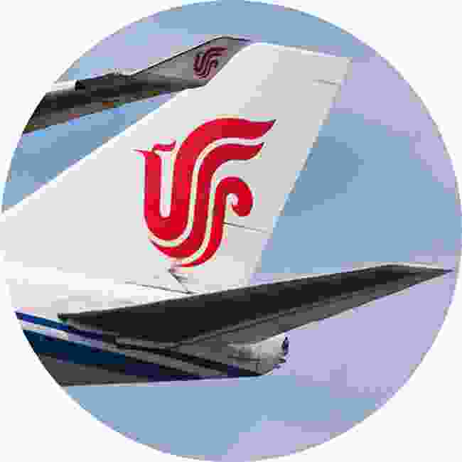 The Air China phoenix. Also an artistic representation of the work 'VIP' (Shutterstock)