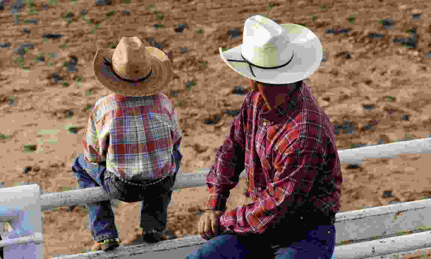 Father and son watching a rodeo (Dreamstime)