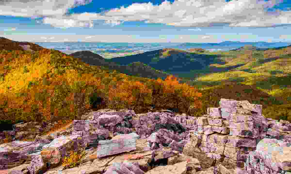 The Appalachian Trail in the fall (Dreamstime)