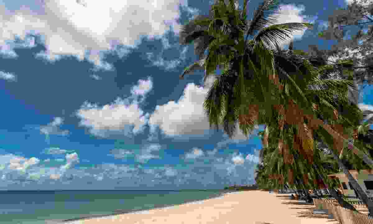 Beach on Pemba Bay (Dreamstime)