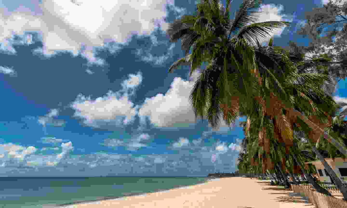 Beach on Pemba Bay (Dreamstime)