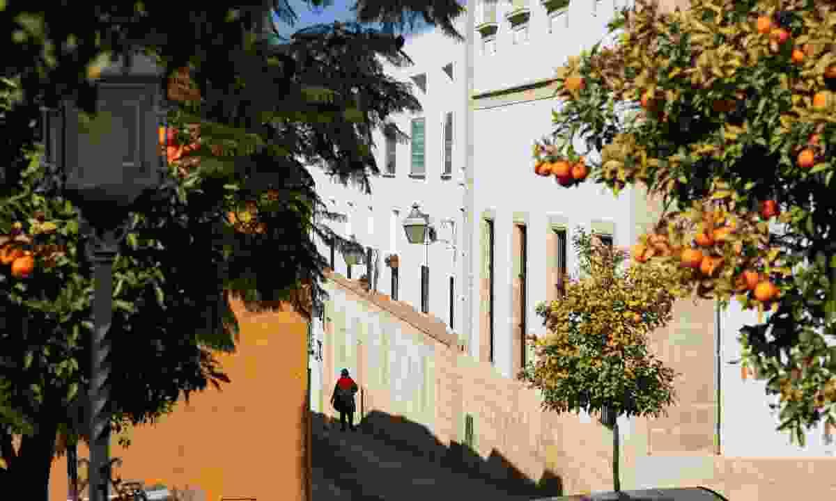 Jerez old town (Shutterstock)