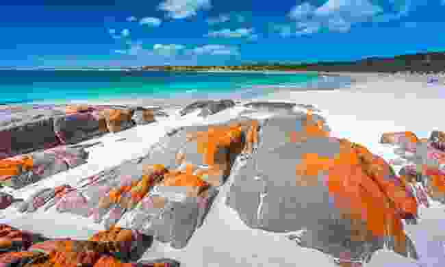 Dolphin Bay on the Yorke Peninsula (Shutterstock)
