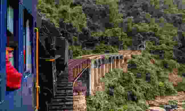 A train rides through southern India (Dreamstime)