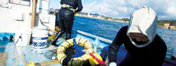 Japan's ama divers, or sea women can be found in Osatu (Mark Stratton)