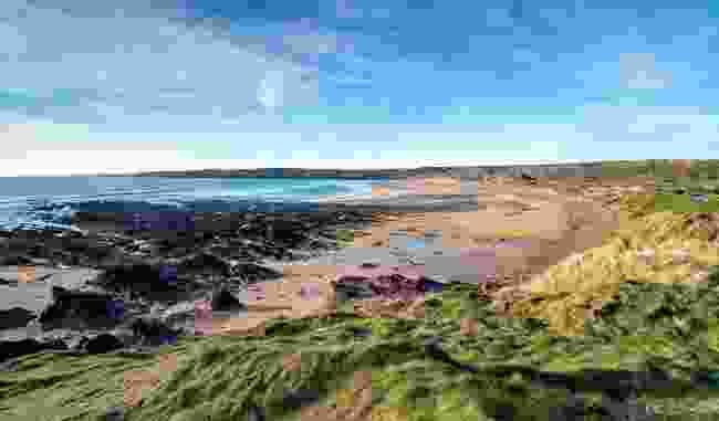 Freshwater West, Pembrokeshire (Shutterstock)