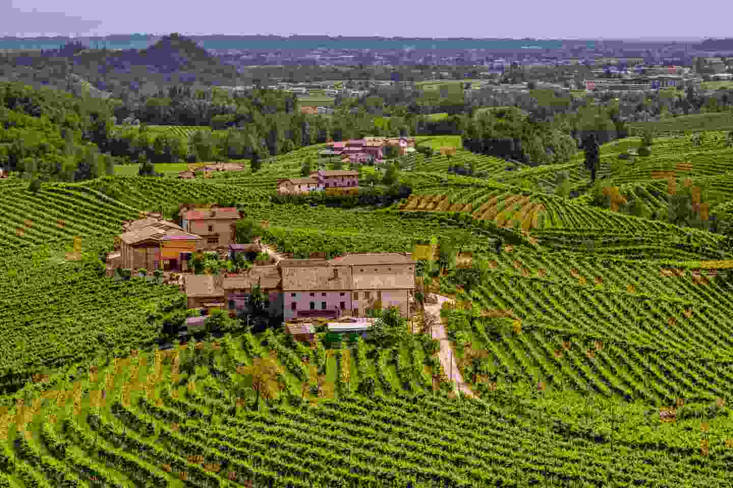 Sweeping views of the Prosecco region, Italy (Shutterstock)