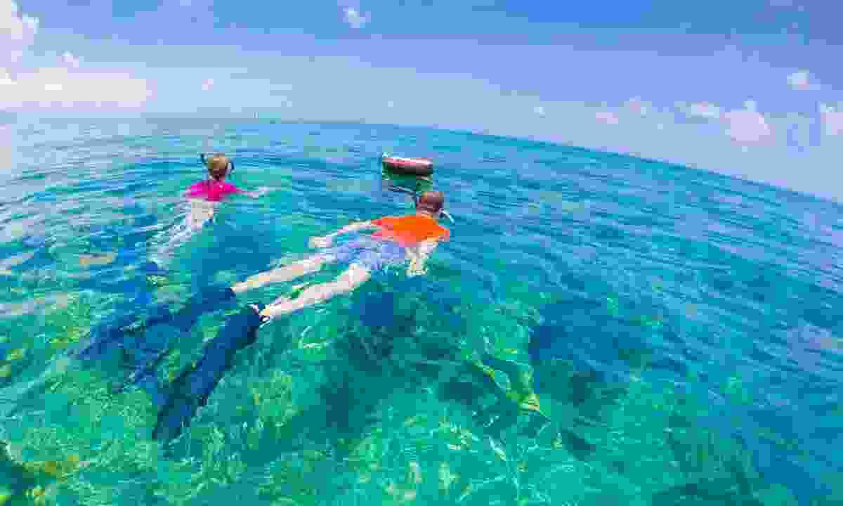 Snorkelling in Key West (Shutterstock)