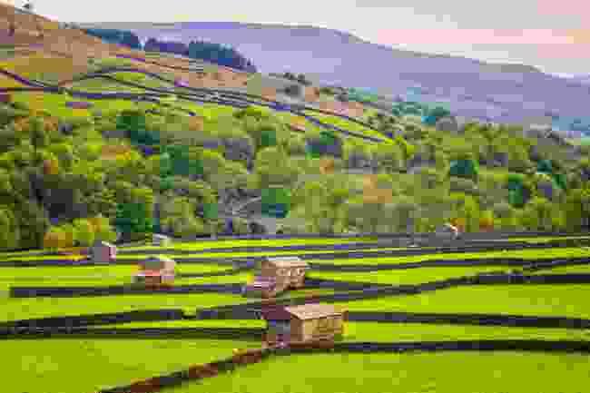 The hillside settlement of Gunnerside in Swaledale, Yorkshire (Shutterstock)